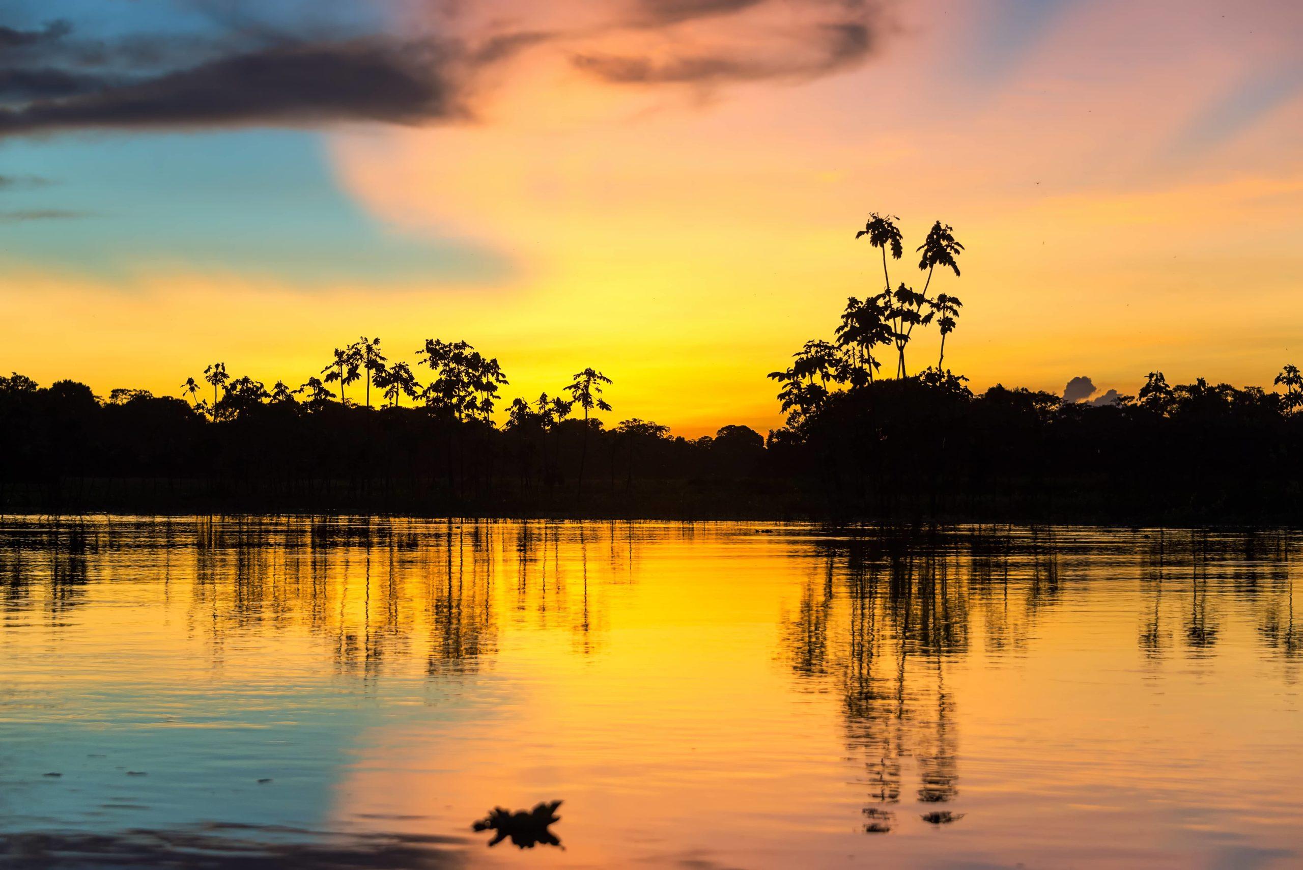 Conociendo el Amazonas 3