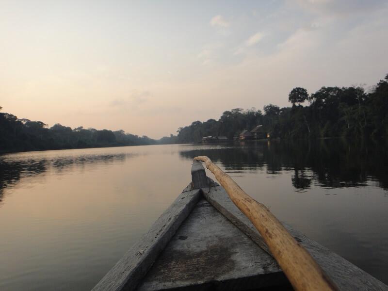 Amazonas clásico 5