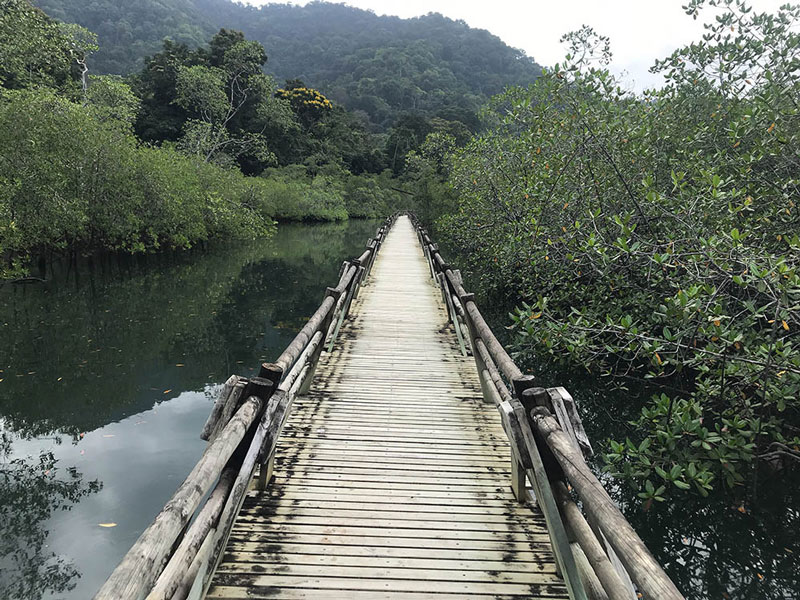 Aventura Bahía Solano 4