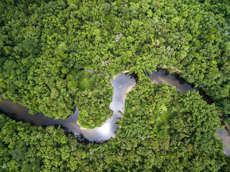Experiencia Amazonas 5