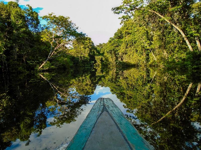 Conociendo el Amazonas 0