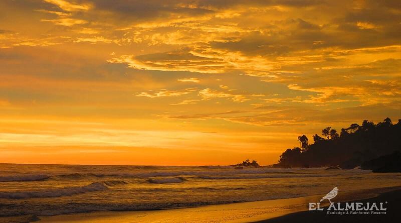 Ballenas a la vista Bahía Solano 5N 2